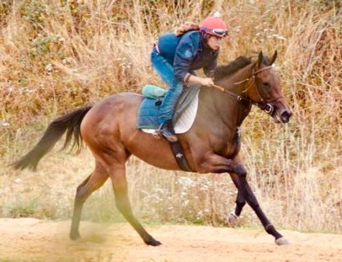 Mallory BALTI, lad-jockey au galop